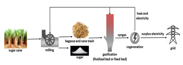 Environmental-economic evaluation of sugar cane bagasse gasification power plants versus combined-cycle gas power plants