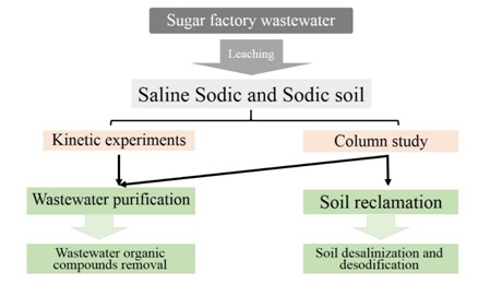 Application of wastewater with high organic load for saline-sodic soil reclamation focusing on soil purification ability