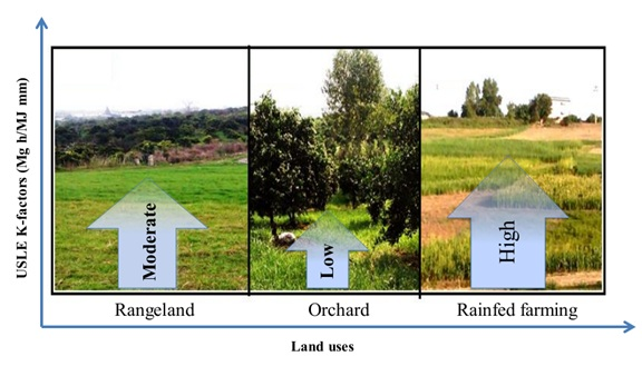 Impact of land use change on soil erodibility