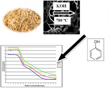Preparation, characterization and phenol adsorption capacity of activated carbons from African beech wood sawdust
