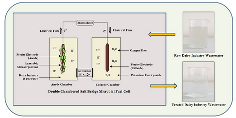 Pollution reduction and electricity production from dairy industry wastewater with microbial fuel cell