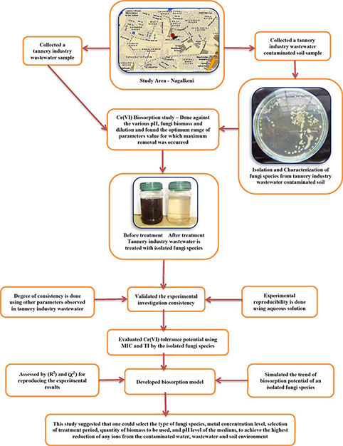 Biosorption of hexavalent chromium in a tannery industry wastewater using fungi species