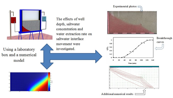 Laboratory investigation of water extraction effects on saltwater wedge displacement